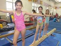 Gymnastics | The Connection